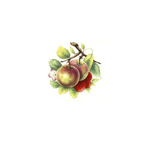 Õunad maasikatega 25mm