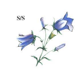 Sinised-kellukad-SS_Mins