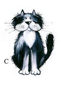 kass C