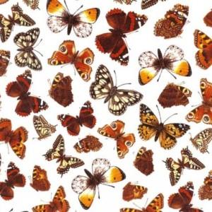 Suur liblikaleht