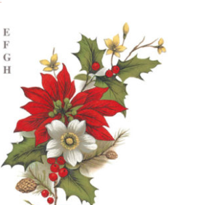 joulutahekimp-efgh