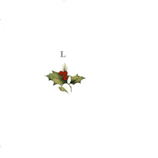 joulutahekimp-l