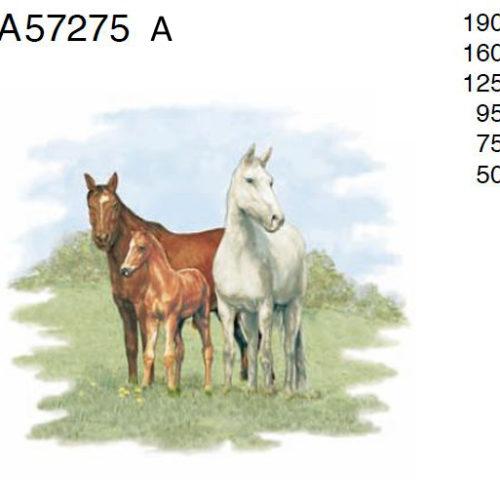 kolm hobust
