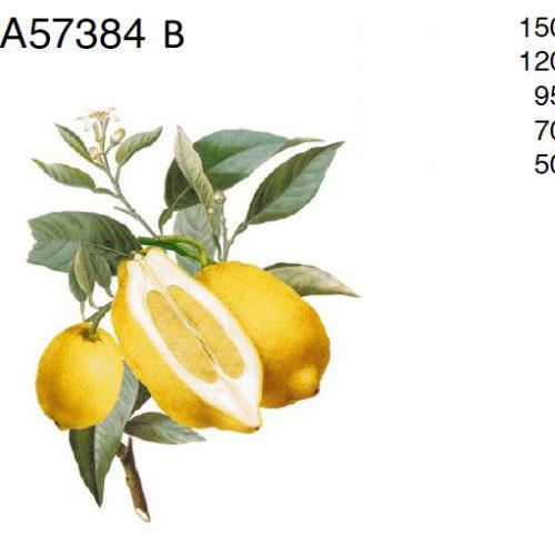 loigatud sidrunid